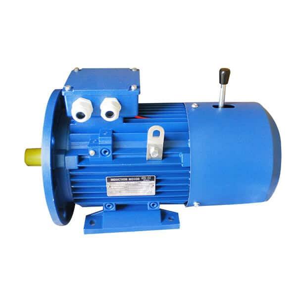 elektromotor MS